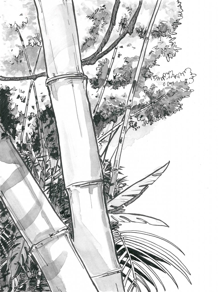 bamboo3_pietro_tedeschi