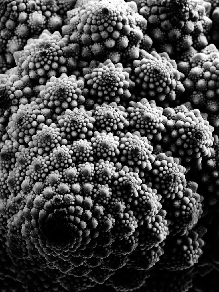 Oggetto frattale: broccolo romano