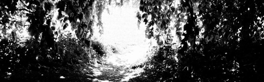 N.09 | LA RITIRATA – TUNN