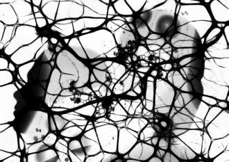 Interconnessioni neuronali. Rappresentazione grafica di Anna Laviosa, 2018