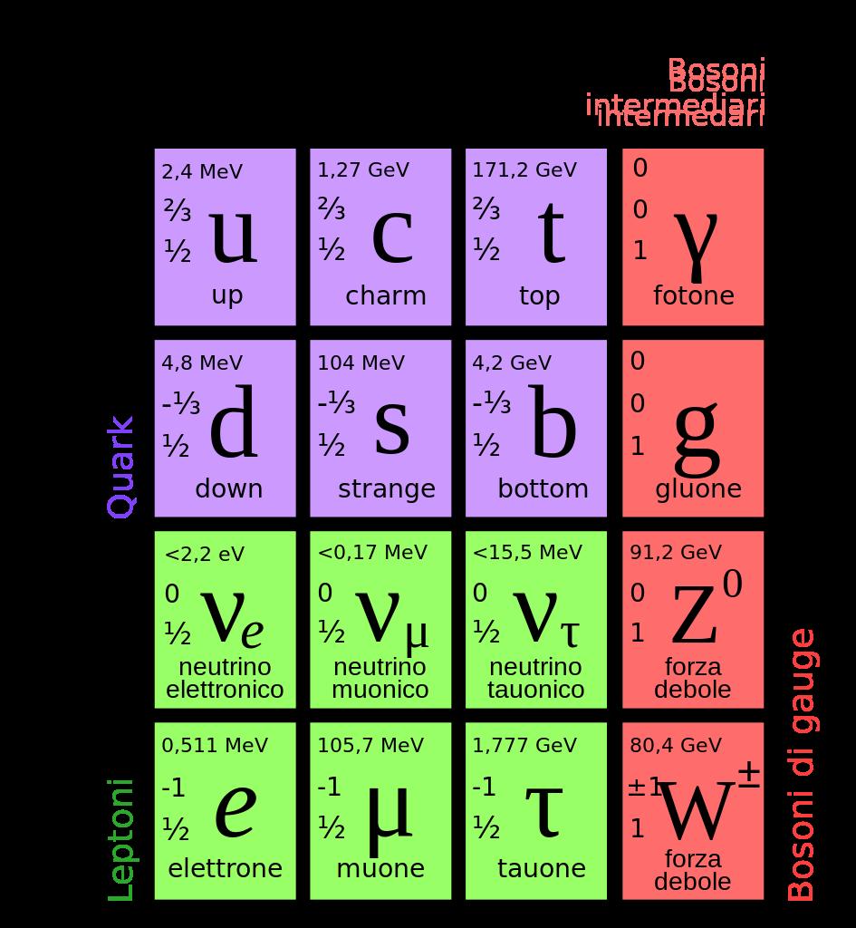 Modello Standard della fisica delle particelle elementari